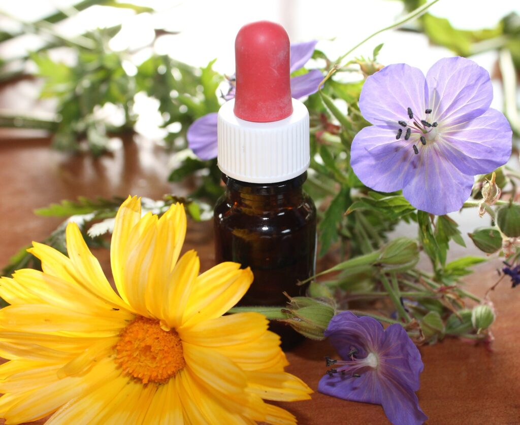 all natural skincare ingredients